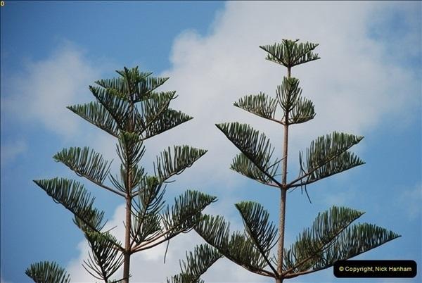 2012-11-11 Las Palmas, Grand Canaria, Canary Islands (201)207