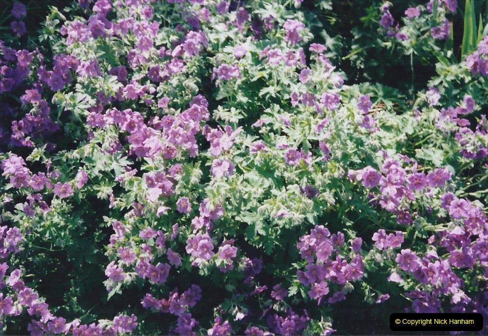 1999 June, Stamford - Burghley - Barnsdale. (59) Number 9 Garden. 059