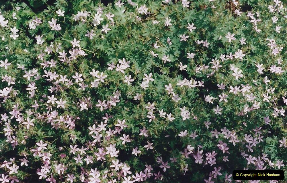 1999 June, Stamford - Burghley - Barnsdale. (92) Number 24 Living Garden. 092