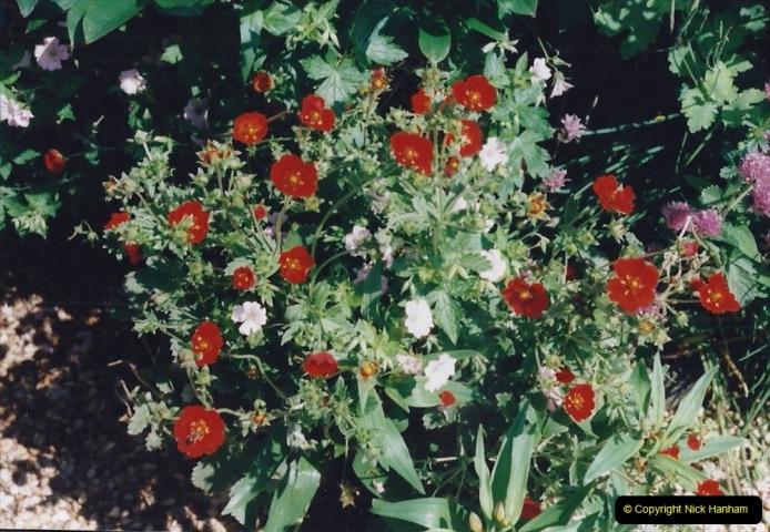 1999 June, Stamford - Burghley - Barnsdale. (58) Number 9 Garden. 058