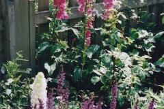 1999 June, Stamford - Burghley - Barnsdale. (50) Number 11 Garden. 050