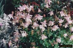 1999 June, Stamford - Burghley - Barnsdale. (52) Number 11 Garden. 052