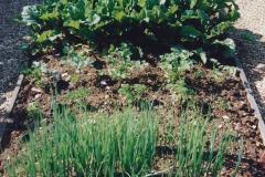 1999 June, Stamford - Burghley - Barnsdale. (56) Number 9 Garden. 056