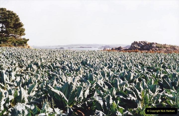 1995 France October. (19) Callot Island. 19
