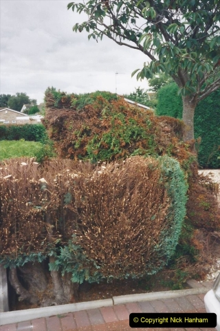 2000 Miscellaneous. (170) Garden improvements with my neighbour. 171