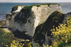 2000 Miscellaneous. (118) Your Host's Wife take a party of friends to Studland, Dorset. 119