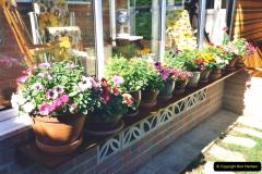 2000 Miscellaneous. (160) Our Back Garden. 161
