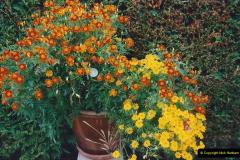 2000 Miscellaneous. (164) Our Back Garden. 165