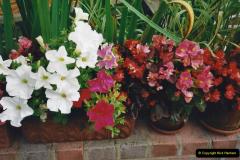 2000 Miscellaneous. (166) Our Back Garden. 167
