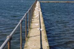 2000 Miscellaneous. (237) Poole Park, Poole, Dorset 238