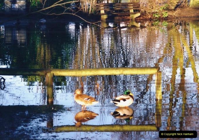2001 Miscellaneous. (26) Poole Park, Poole, Dorset. 026