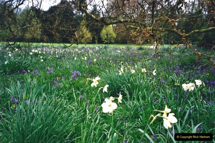 2001 Miscellaneous. (78) Hatchlands Park, Guildford, Surrey. 078