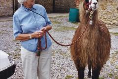 2002 September 04 Taking Llamas for a Walk. (15) 15