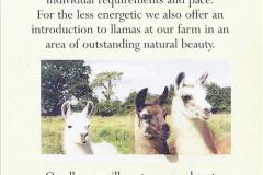 2002 September 04 Taking Llamas for a Walk. (2)  02