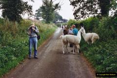 2002 September 04 Taking Llamas for a Walk. (20) 20