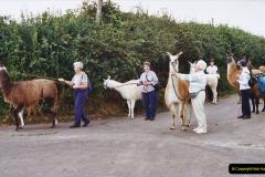 2002 September 04 Taking Llamas for a Walk. (26) 26