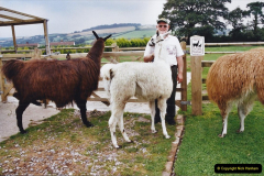 2002 September 04 Taking Llamas for a Walk. (30) 30
