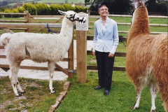 2002 September 04 Taking Llamas for a Walk. (31) 31