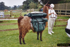 2002 September 04 Taking Llamas for a Walk. (34) 34