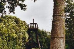 2003 June - Devon & Cornwall. (50) Wheal Martyn China Clay Museum. 50