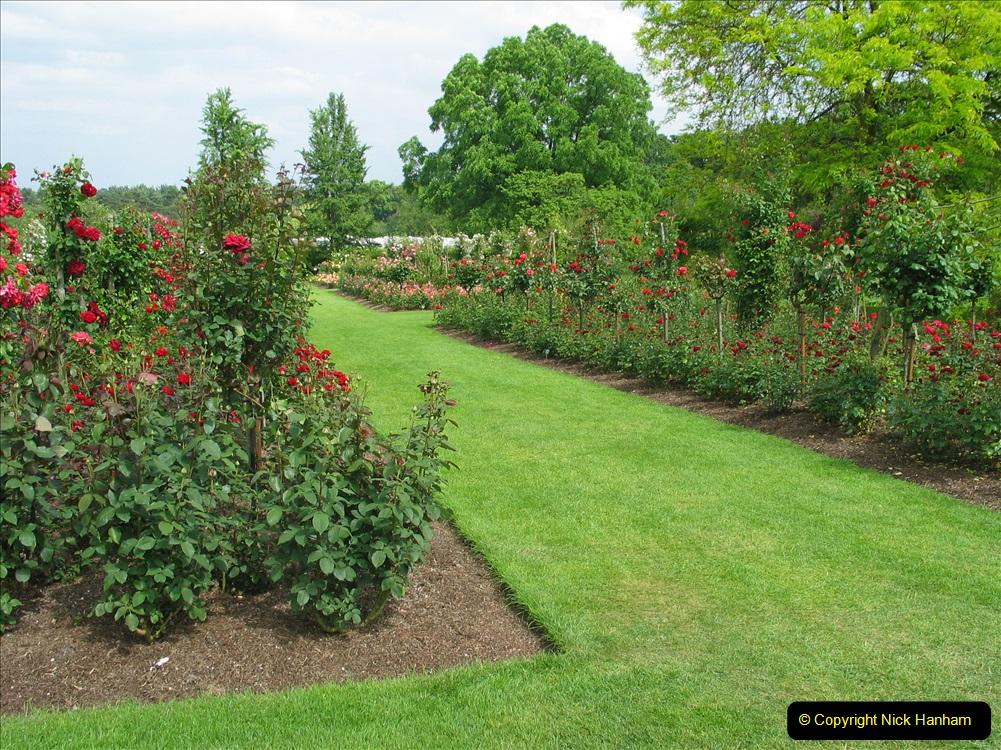 Retrospective 2004 June - RHS Wisley group visit. (61) 01