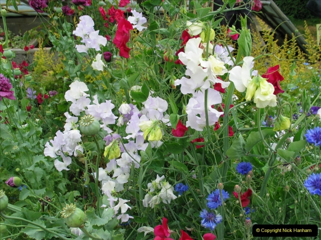 Retrospective 2004 June - The colours of Northamptonshire. (12) 12