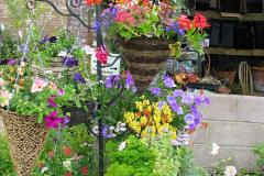 Retrospective 2004 June - The colours of Northamptonshire. (13) 13