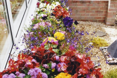 2004 Miscellaneous. (107) Your Host's Garden.