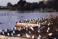 2004 Miscellaneous. (2) Poole Park, Poole, Dorset.