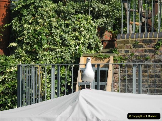 Retrospective 2005 July - London. (31) 31
