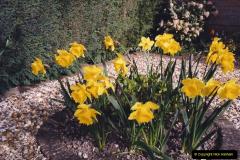 2005 Miscellaneous. (47) Our Garden.