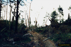 1988 Brittany, France. (15) Huelgoat visit after the Great Storm devistation of Occtober 1987. the South of Englang also suffered from the same storm. 15
