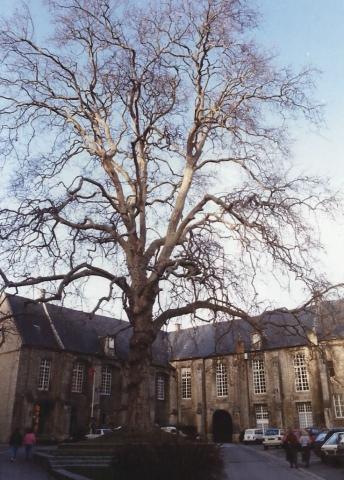 1990 Retrospective France North West and Paris, School Visit. (54) Bayeux. 054