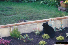 2001 Garden improvements at my Wifes cousins by your Host. Garden designed by my Wife's cousin.  (50) Anothe cat looking over the wall.50
