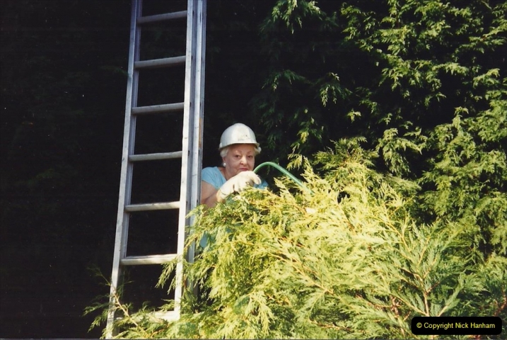April 1990 Your Host alters the back garden. (62) Pruning trees with the help of my late Mother. 62