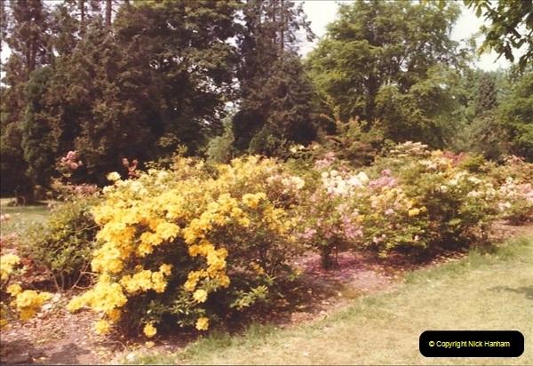 1982 Exbury Gardens. (7) Hampshire. 003194003