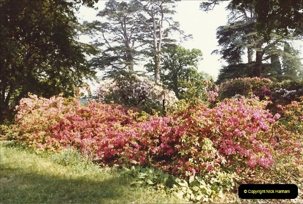 1982 Exbury Gardens. (8) Hampshire. 004195004