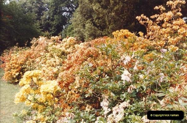 1982 Exbury Gardens. (9) Hampshire. 005196005