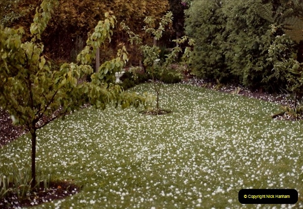 1983 May Hail storm in Poole, Dorset. (2) Hail stones as big as golf balls. 088280089