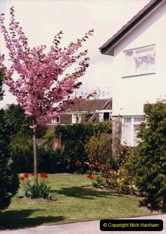 1986 Spring at your Host's Home. (1) 510319
