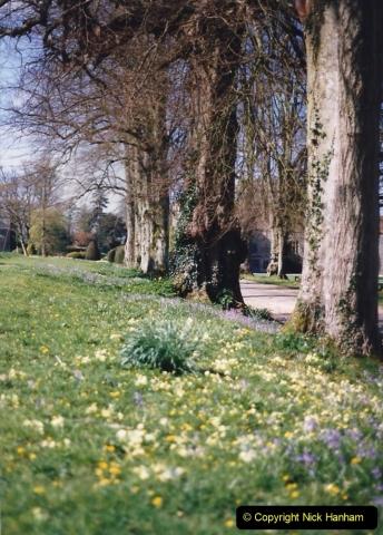 1995 Miscellaneous. (43) Forde Abbey, Dorset. 0542