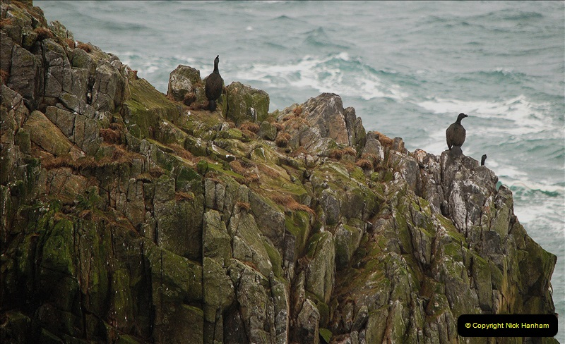 2019-03-29 Stornoway, Isle of Lewis. (60) At the But of Lewis Light House. 60