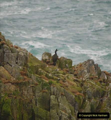 2019-03-29 Stornoway, Isle of Lewis. (57) At the But of Lewis Light House. 57