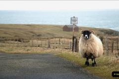 2019-03-29 Stornoway, Isle of Lewis. (47) 47