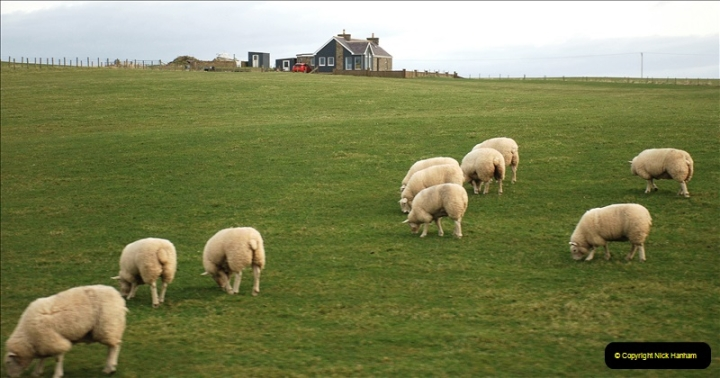 2019-03-28 Kirkwall, Orkney Islands. (33) 033