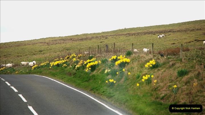 2019-03-28 Kirkwall, Orkney Islands. (96) 094