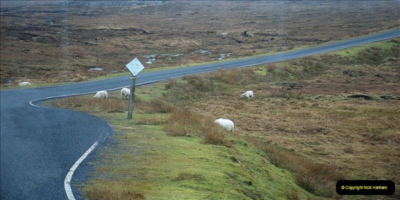 2019-03-27 Lerwick, Shetland Islands. (126) 126