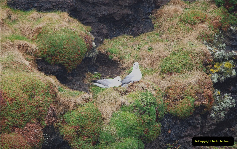 2019-03-27 Lerwick, Shetland Islands. (158) At Eshaness Lighthouse. 158