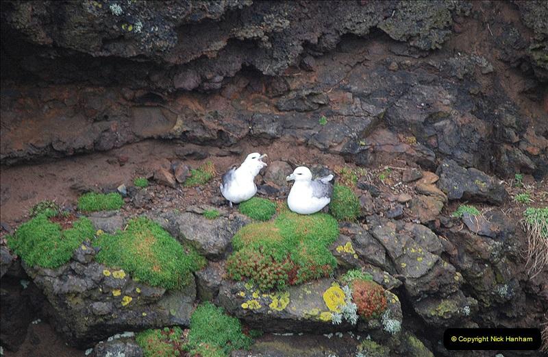 2019-03-27 Lerwick, Shetland Islands. (170) At Eshaness Lighthouse. 170