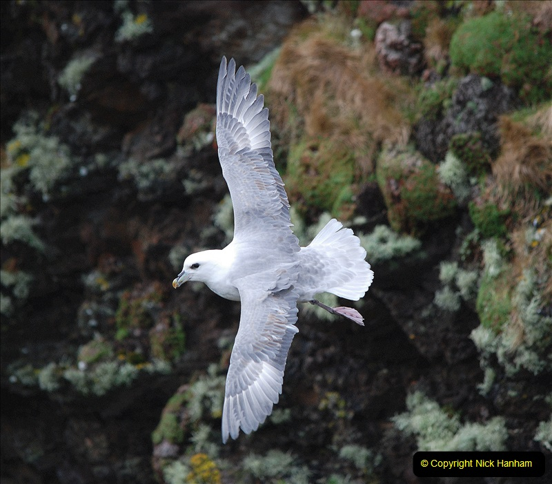 2019-03-27 Lerwick, Shetland Islands. (178) At Eshaness Lighthouse. 178
